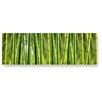 LanaKK Wandbild Bambuswald, Fotodruck