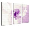 LanaKK Orchid 3 Piece Photographic Print on Canvas Set