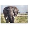 LanaKK Wandbild Afrika, Fotodruck