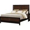 Darby Home Co Guerrero Panel Bed