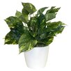 Darby Home Co Floor Plant in Decorative Vase