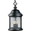 Alcott Hill Drumakeely 3 Light Outdoor Hanging Lantern