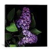 Alcott Hill Deep Purple Photographic Print on Wrapped Canvas