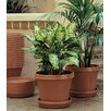 Felker Resin Pot Planter - Size: 3.63 inch High x 4.25 inch Wide x 4.25 inch Deep - Color: Terracotta - Charlton Home Planters