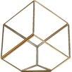 Tooley Glass Terrarium - Brayden Studio Planters