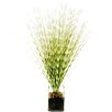 LCG Florals Zebra Grass in a Jar with River Rocks, Faux Dirt and Faux Water