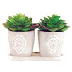 LCG Florals 3 Piece Succulents in Embossed Pots with Tray Set