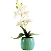 LCG Florals Phalaenopsis Orchid in a Distressed Pot with Faux Dirt