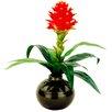 LCG Florals Tropical Troch Bromeliad in a Ceramic Vase