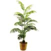 LCG Florals Areca Palm Floor Plant in Basket