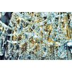 Fluorescent Palace Diamond Dust Photographic Print on Canvas