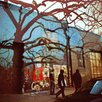 Fluorescent Palace Village Photographic Print on Canvas