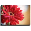 Bashian Home Dew drop flower by Terri Ellis Photographic Print on Wrapped Canvas