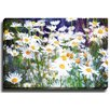 Bashian Home Daisy Dream by Jenndalyn Photographic Print on Gallery Wrapped Canvas
