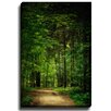 Bashian Home Into the Woods by Lisa Russo Photographic Print on Gallery Wrapped Canvas