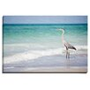 Bashian Home Heron by Lisa Russo Photographic Print on Wrapped Canvas