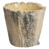 Tree Bark Cement Pot Planter - Size: Medium - Prinz Planters