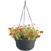 Leadore Self-Watering Vinyl Hanging Planter - Color: Terracotta, Size: 6 inch High x 10.38 inch Wide x 10.38 inch Deep - August Grove Planters