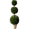 "One Allium Way 36"" Topiary Triple Ball Tree in Pot"