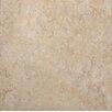"""Tesoro Castello 20"""" x 20"""" Procelain Field Tile in Bianco"""