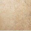 """Tesoro Castello 20"""" x 20"""" Procelain Field Tile in Dorado"""