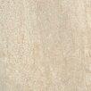 """Tesoro Headline 3"""" x 6"""" Porcelain Field Tile in Herald Ivory"""