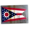 Picture it on Canvas 'Ohio National Patriotic Flag' Painting Print