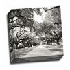 Picture it on Canvas 'Charleston Oaks X' Photographic Print Wrapped Canvas