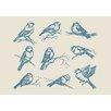 Lés papiers de Ninon Poster Blue Ornitho, Grafikdruck