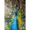 Lés papiers de Ninon Poster Peacock, Grafikdruck
