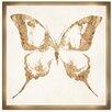 Bungalow Rose Farfalla Framed Graphic Art
