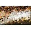 """Picture Perfect International """"Unifying Hope"""" by Mark Lawrence Painting Print on Wrapped Canvas"""