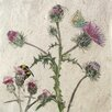 AnnabelLangrish Thistle by Annabel Langrish Graphic Art