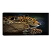 Design Art Relaxing Jaguar Animal Photographic Print on Wrapped Canvas