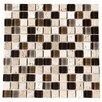 """Kellani Paragon 12"""" x 12"""" Glass Mosaic Tile in Mocha"""