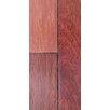 "Albero Valley 3.25"" Solid Coklete Hardwood Flooring in Natural"