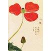 Magnolia Box Honzo Zufu [Poppy] by Kan'en Iwasaki Art Print on Canvas