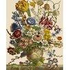 Magnolia Box Flowers In A Vase by Pieter Casteels Framed Art Print
