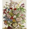 Magnolia Box Gerahmter Kunstdruck Flowers In A Vase von Pieter Casteels