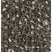 Modern Rugs Enoki Speckled Felted Shag Chocolate Area Rug