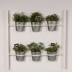 6-Piece Groves Metal Wall Planter Set - Color: White - Kate and Laurel Planters