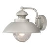 Breakwater Bay Reliance 1 Light Outdoor Barn Light