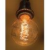 Wing Tai Trading 40W Tan Glass 130-Volt Light Bulb