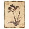 Mario Industries Graceful Floral Graphic Art on Wrapped Canvas