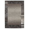 Obsession Coral Taupe Area Rug