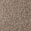 """Berkshire Flooring Global Residential Tranquility 22"""" x 22"""" Carpet Tile"""