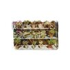 Andrew Lee Flower Plant Pots by Andrew Lee Graphic Art on Canvas