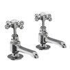 Burlington Pillar Taps (Set of 2)