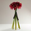 Babylon London Amaryllis Flower Heads