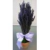 Lavender Pot Planter - From the Garden Planters